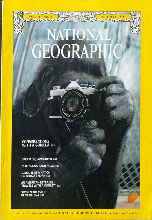 the-gorilla-with-a-camera-national-geographic-magazine-october-1978